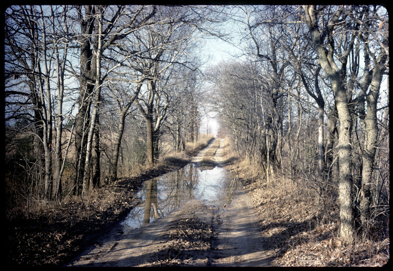Lousiana Dirt Road, 1973